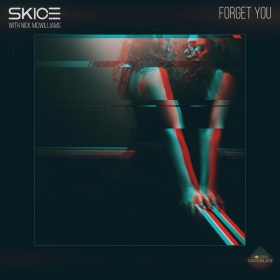 SKICE FEAT. NICK MCWILLIAMS - FORGET YOU